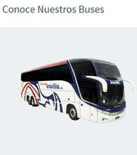 Conoce nuestros buses