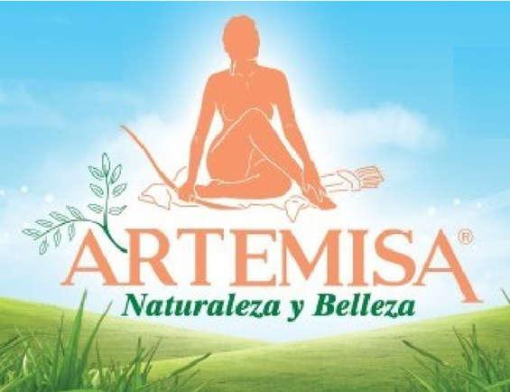 Ofertas de Artemisa, Productos capilares