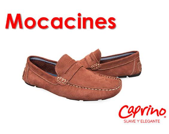 Ofertas de Calzado Caprino, Mocacines